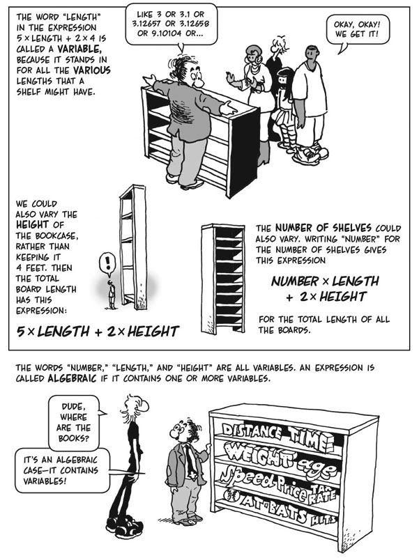 The cartoon guide to algebra larry gonick view sample pages fandeluxe Choice Image